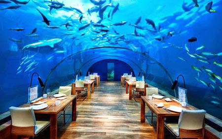 رستوران زیرآب,عجایب گردشگری,بهترین رستوران های زیرآب