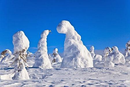 پارک ملی ریسیتونتوری در فنلاند,دیدنی های فنلاند,تصاویر پارک ملی فنلاند در زمستان