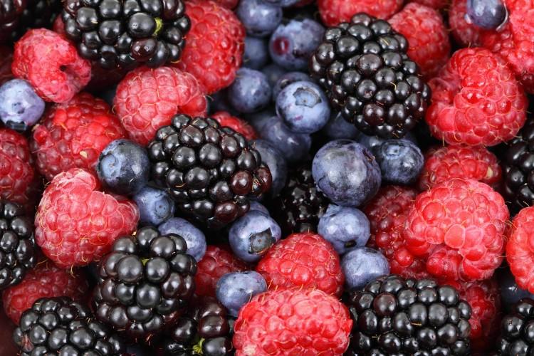 10 میوه پرطرفدار آمریکا را بشناسید