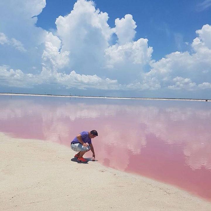 دریاچه صورتی مکزیک