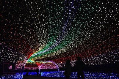تونل روشنایی,عکس هایی از تونل روشنایی در ژاپن,باغ ناباناساتو