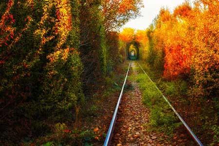 فرهنگ کشور رومانی,اقتصاد کشور رومانی, جاذبه های گردشگری رومانی