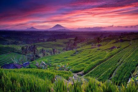 مکانهای تفریحی بالی,جاهای دیدنی بالی
