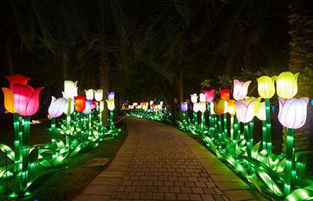 پارک نور دبی,تصاویر پارک نور دبی
