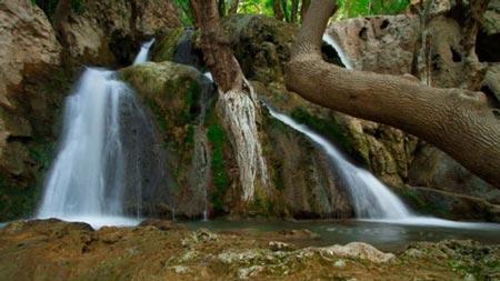 منطقه حفاظت شده تنگ بستانک
