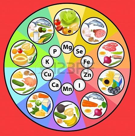 برای طبیعت گردی چه خوراکی هایی با خود ببریم؟