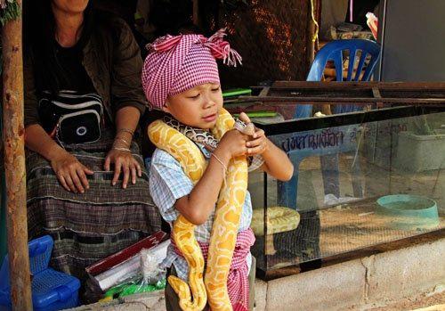 با دهکده مارها در تایلند آشنایی دارید؟