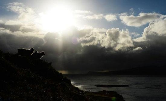 سفر تصویری به بهشت جزایر فارو