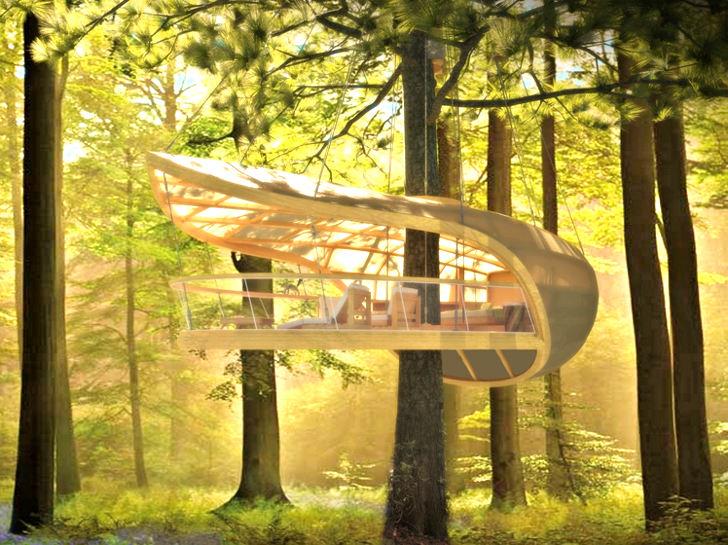 خانه درختی که با هتل 5ستاره لوکس برابری می کند