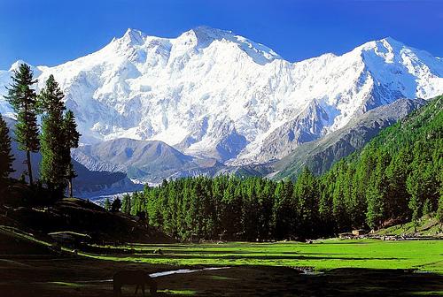 نانگا پربات (Nanga Parbat)